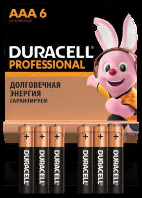 Duracell Professional AAA (6шт.)